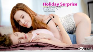 Holiday Surprise - Viv Thomas